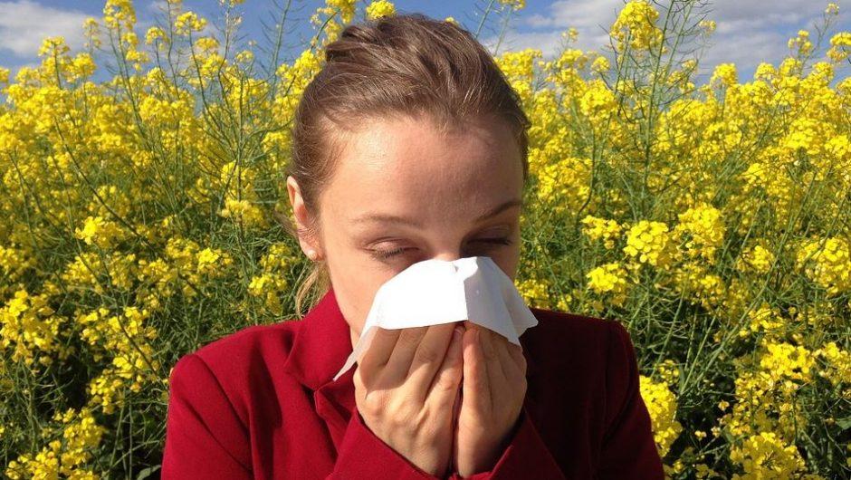 Trois méthodes pour combattre les allergies
