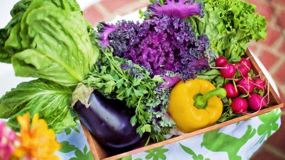 Pourquoi utiliser des compléments alimentaires bio ?